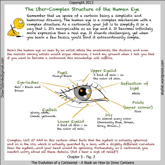 Book - Evolution of a Cartoonist - A book on how to draw cartoons - Structure of the human eye - a Cartoonist's Perspective.