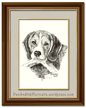 Dog-portraits, portrait of a beagle - scent-hounds - cute dogs, cats, and other pet portraits by shafali