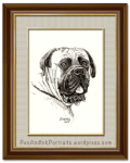 Portrait of the English Mastiff Dog - Pet and Wildlife Portraits in Pen and Ink by Shafali