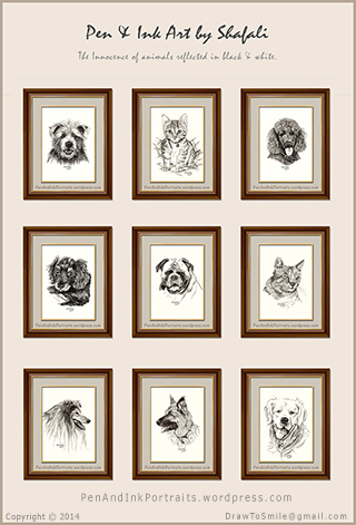 Pen and Ink portraits of dogs, cats, pups, kittens, and wildlife in pen and ink - created by shafali