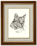 Pen and Ink Pet Portraits by Shafali - The Portrait of a short-haired tabby cat