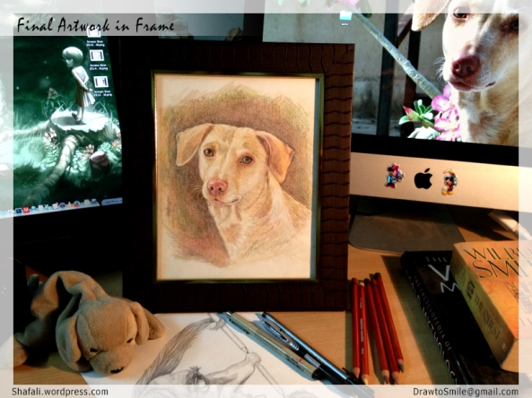 Color Pet Portraits - Portrait of Oorvi - Dog and Pup Portrait Artist Shafali.