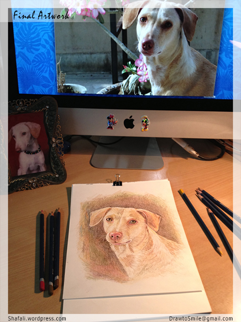 Color Portraits of Dogs and Pups by Pet Portrait Artist Shafali.