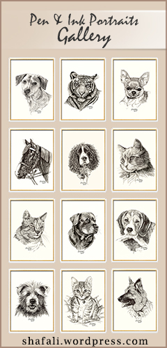 Click to View my Pen and Ink Portraits of Pets and Wildlife.