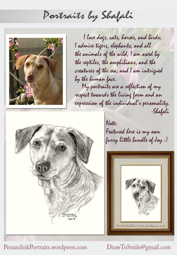 Portrait of A beautiful Dog in Black and White - Medium: Pen and Ink, Done from a Photograph.